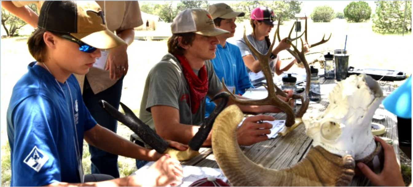 Wildlife Conservation Camp